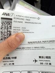 中村マルメ研修チケット.jpg