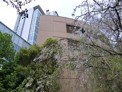 国立成育医療研究センター_02.jpg