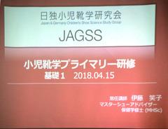 H300415_16_JAGSS_02slide.jpg