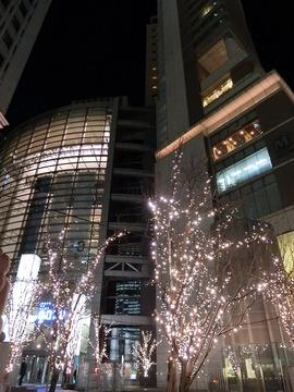 R020131_6_night.jpg
